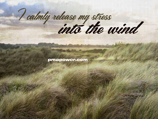 I calmly release my stress into the wind