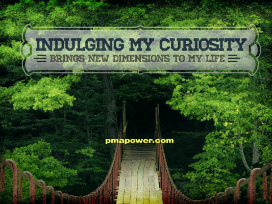 Indulging my curiosity brings new dimension to my life
