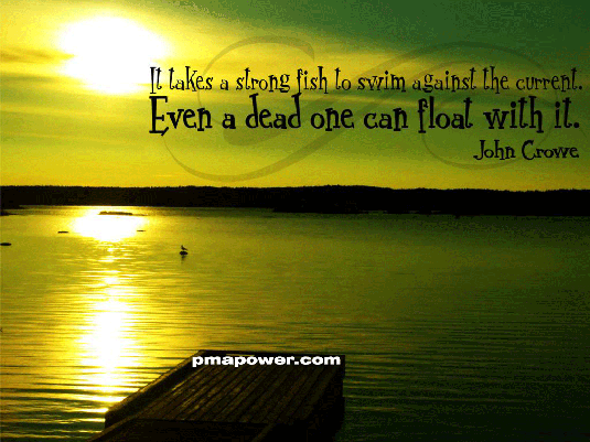 It takes a strong fish to swim against the current. Even a dead one can float with it