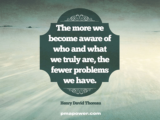 The more we become aware of who and what we truly are the fewer problems we have - Henry David Thoreau