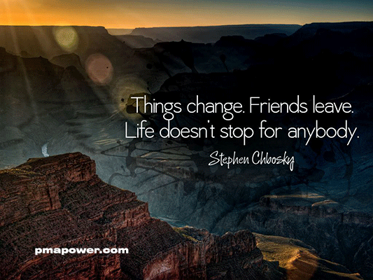 Things change. Friends leave. Life does not stop for anybody - Stephen Chbosky