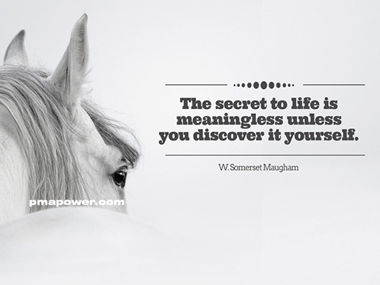 The secret to life is meaningless unless you discover it yourself
