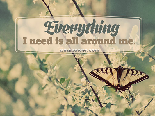 Everything I need is all around me - pmapower.com
