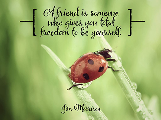 A friend is someone who gives you total freedom to be<br /> yourself