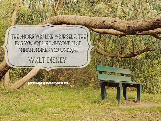 The more you like yourself, the less you are like anyone else, which makes you unique - Walt Disney