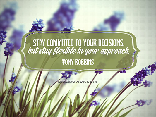 Stay committed to your decisions, but stay flexible in your approach - Tony Robbins